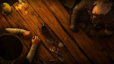 Photo of The Witcher 3. Собиратель карт / Card Collector